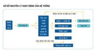 cách xử lý nước hồ cá xi măng
