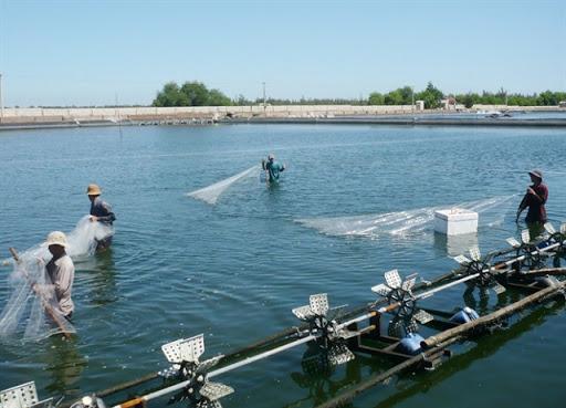 quy chuẩn nước thải nuôi trồng thủy sản