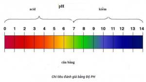 thang đo đọ PH