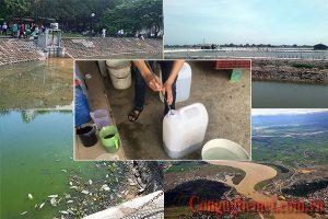 Cách xử lý nước ao bị ô nhiễm