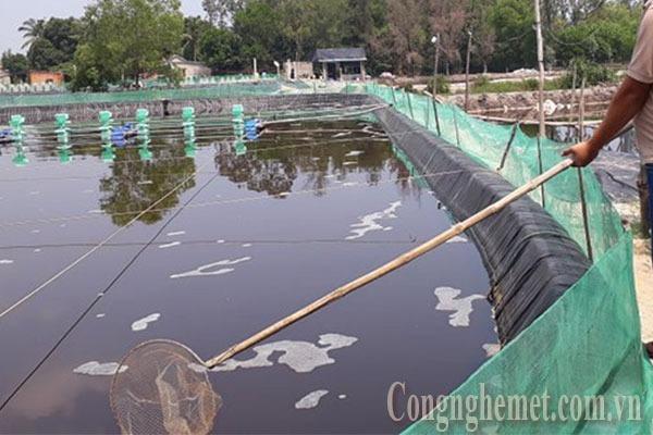 Quy chuẩn nước thải thủy sản