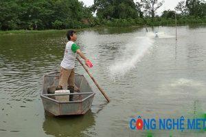 Cần phải tiến hành khử trùng nước sông mới có thể sử dụng thành nước sinh hoạt.