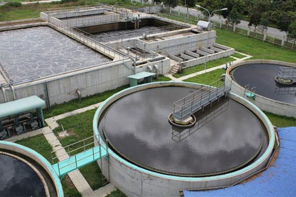 xử lý bằng hóa học tại Việt Nam